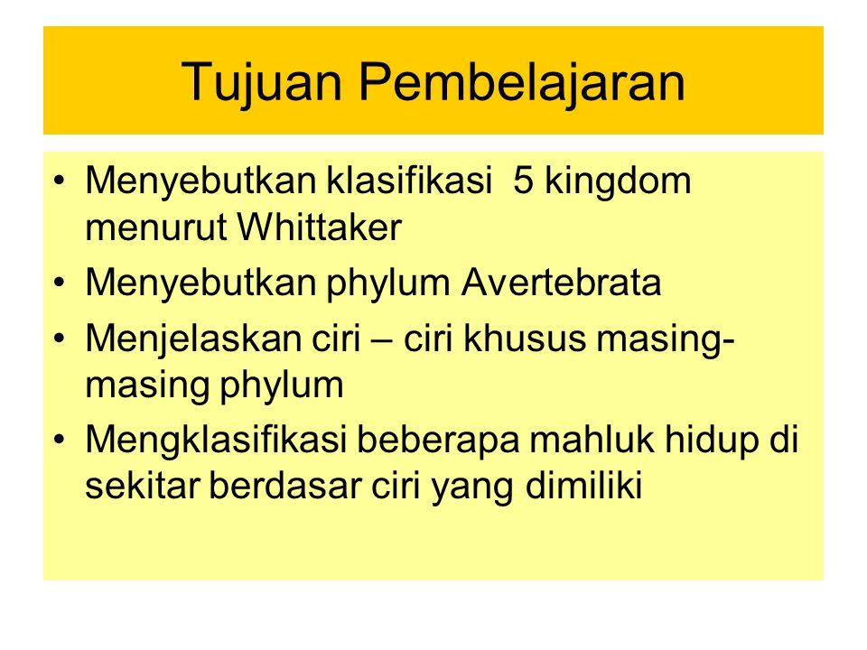Tujuan Pembelajaran Menyebutkan klasifikasi 5 kingdom menurut Whittaker Menyebutkan phylum Avertebrata Menjelaskan ciri – ciri khusus masing- masing p