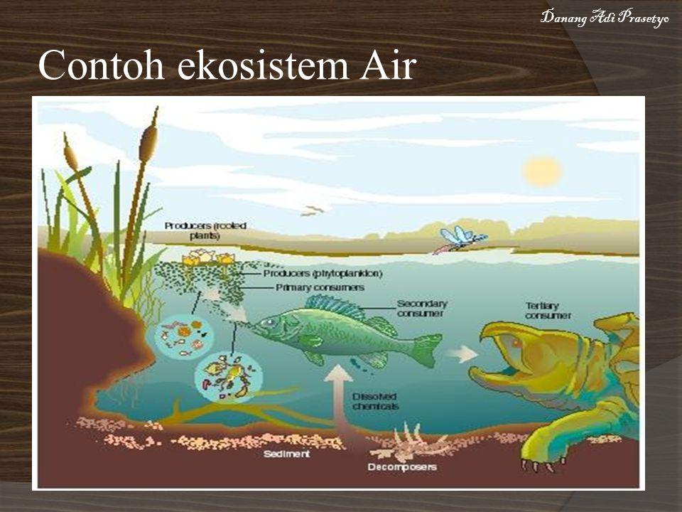 Contoh ekosistem Air Danang Adi Prasetyo