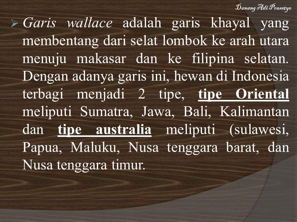  Garis wallace adalah garis khayal yang membentang dari selat lombok ke arah utara menuju makasar dan ke filipina selatan.