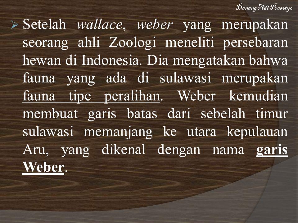  Setelah wallace, weber yang merupakan seorang ahli Zoologi meneliti persebaran hewan di Indonesia. Dia mengatakan bahwa fauna yang ada di sulawasi m