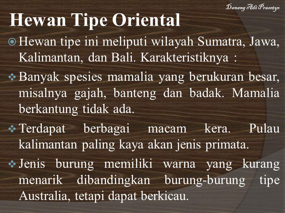 Hewan Tipe Oriental  Hewan tipe ini meliputi wilayah Sumatra, Jawa, Kalimantan, dan Bali. Karakteristiknya :  Banyak spesies mamalia yang berukuran