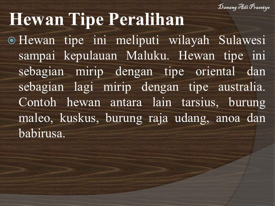  Hewan tipe ini meliputi wilayah Sulawesi sampai kepulauan Maluku. Hewan tipe ini sebagian mirip dengan tipe oriental dan sebagian lagi mirip dengan