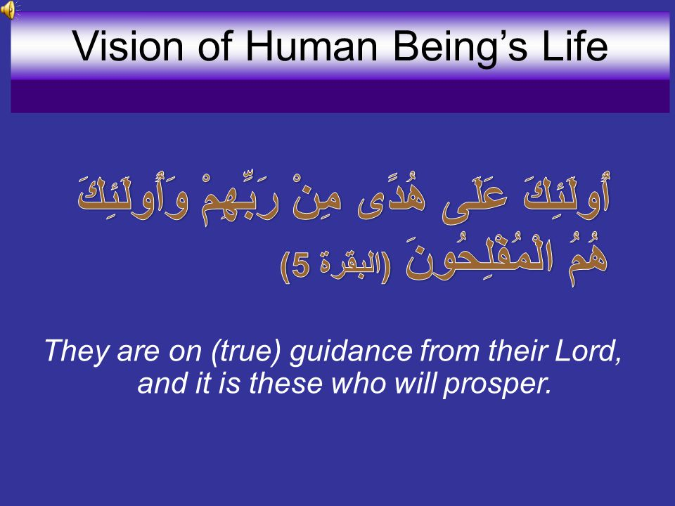 They are on (true) guidance from their Lord, and it is these who will prosper.