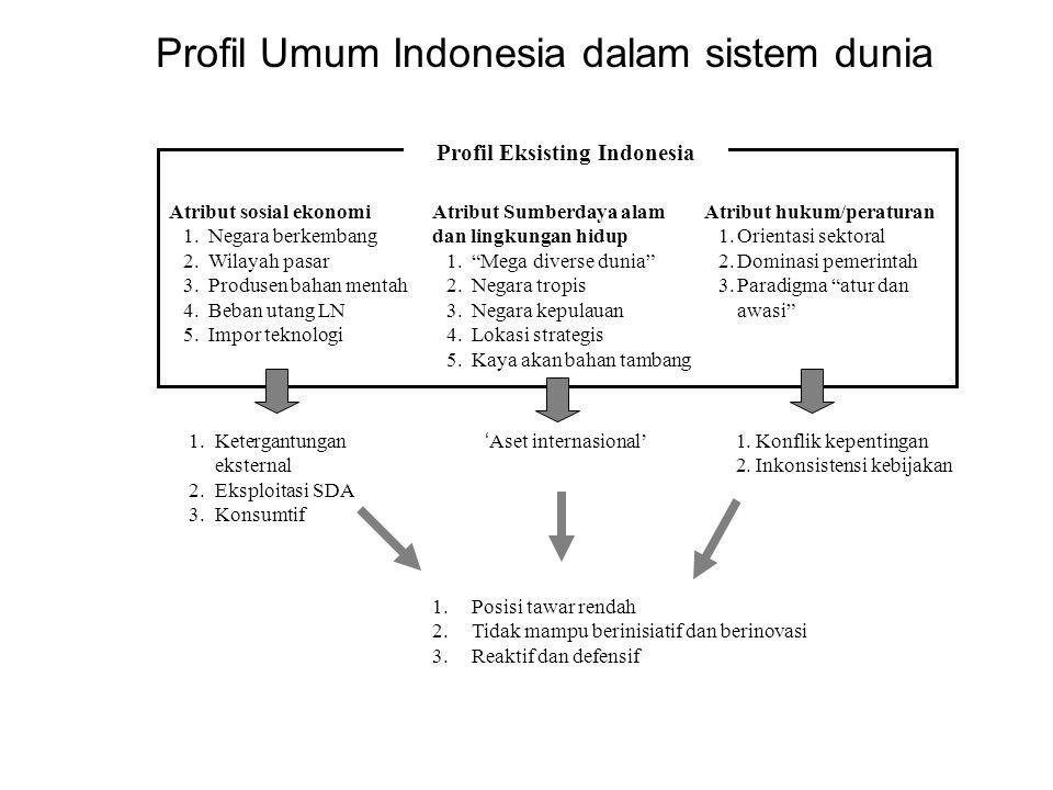 Posisi Indonesia dalam beberapa isu lingkungan internasional Kelompok 77 Produsen Minyak Bumi Koalisi Mega Diverse Isu keanekaragaman hayaiti Isu energi terbarukan Indonesia Isu pendanaan & perdagangan