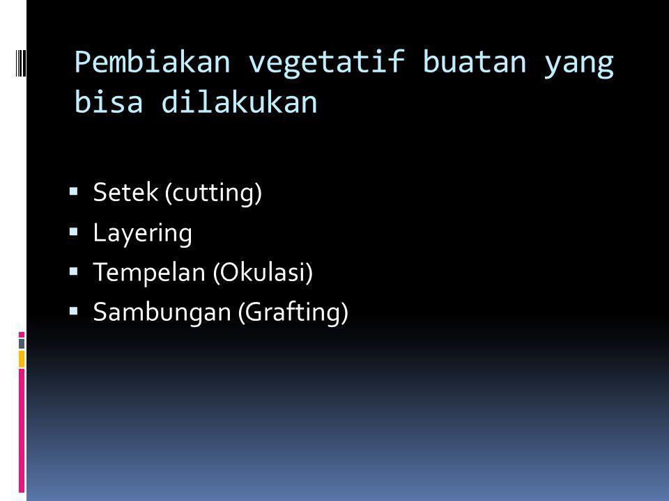 Pembiakan vegetatif buatan yang bisa dilakukan  Setek (cutting)  Layering  Tempelan (Okulasi)  Sambungan (Grafting)