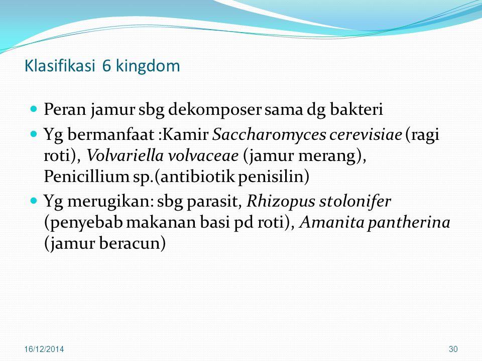 Klasifikasi 6 kingdom Peran jamur sbg dekomposer sama dg bakteri Yg bermanfaat :Kamir Saccharomyces cerevisiae (ragi roti), Volvariella volvaceae (jam