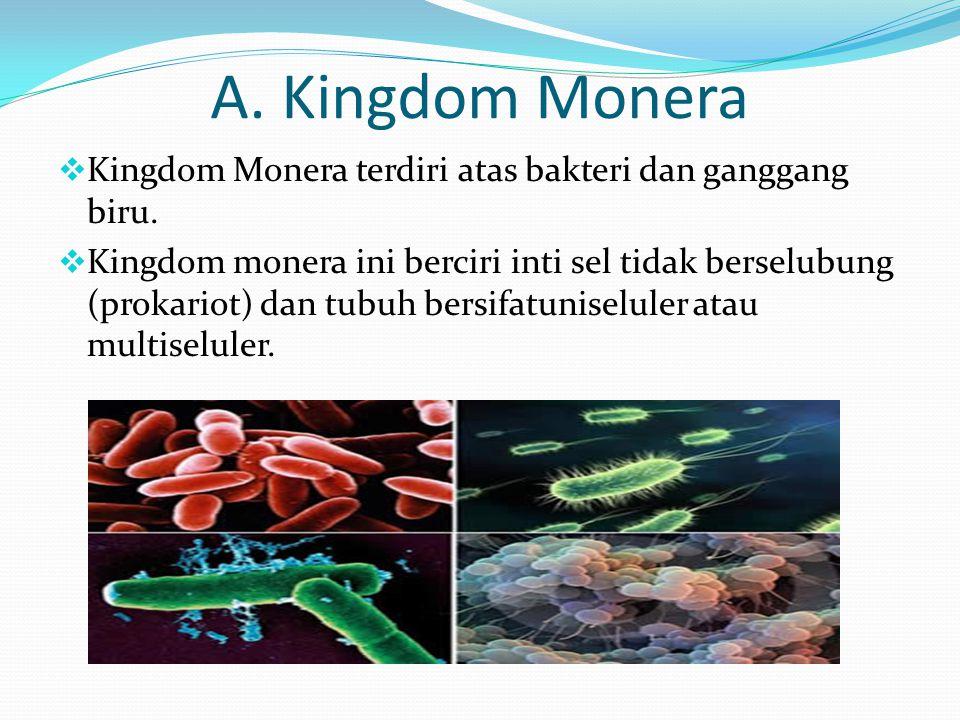 A. Kingdom Monera  Kingdom Monera terdiri atas bakteri dan ganggang biru.  Kingdom monera ini berciri inti sel tidak berselubung (prokariot) dan tub