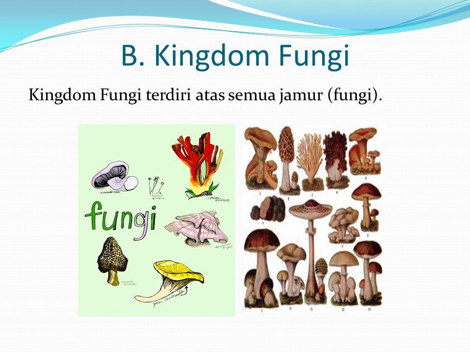 B. Kingdom Fungi Kingdom Fungi terdiri atas semua jamur (fungi).