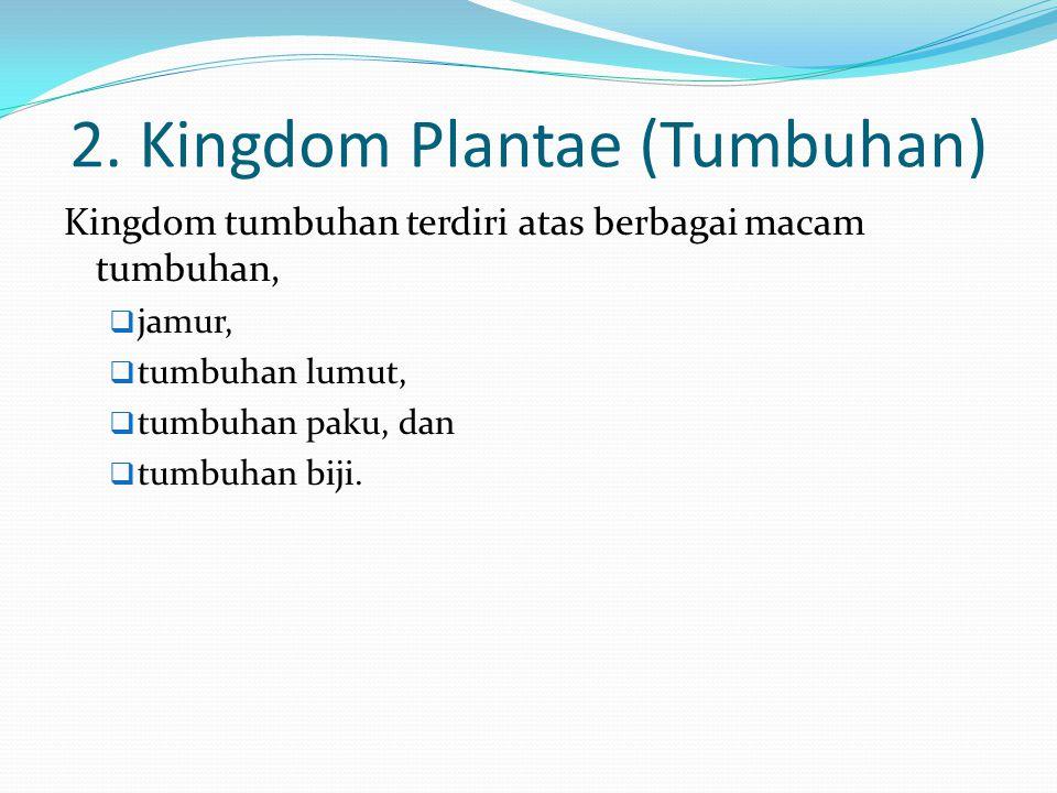 2. Kingdom Plantae (Tumbuhan) Kingdom tumbuhan terdiri atas berbagai macam tumbuhan,  jamur,  tumbuhan lumut,  tumbuhan paku, dan  tumbuhan biji.