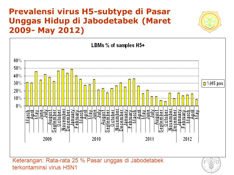 Prevalensi virus H5-subtype di Pasar Unggas Hidup di Jabodetabek (Maret 2009- May 2012) Keterangan: Rata-rata 25 % Pasar unggas di Jabodetabek terkontaminsi virus H5N1