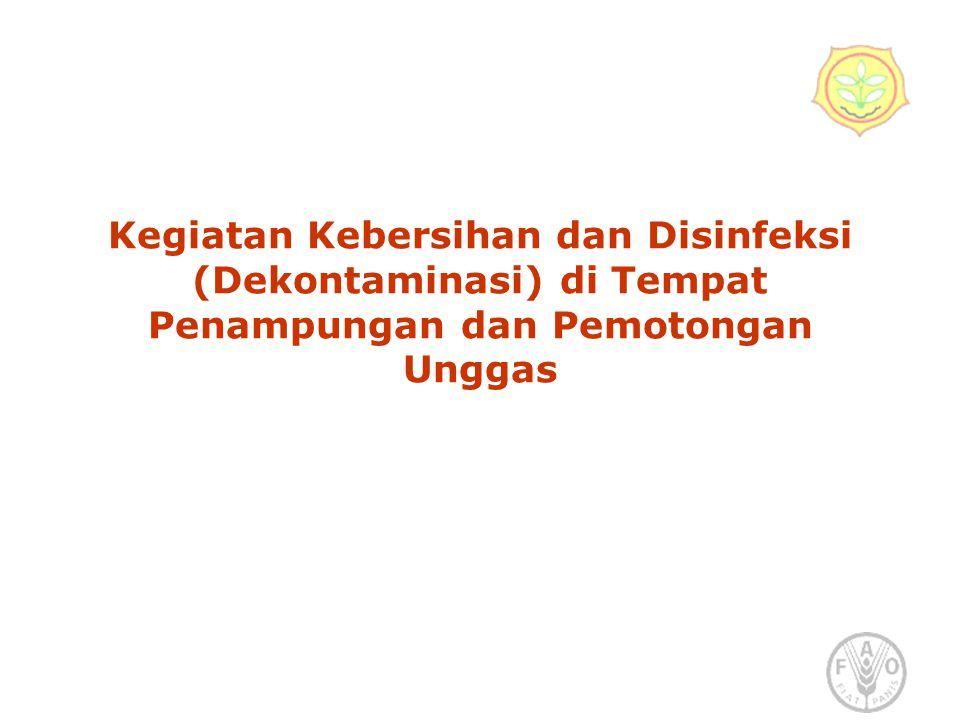 Kegiatan Kebersihan dan Disinfeksi (Dekontaminasi) di Tempat Penampungan dan Pemotongan Unggas