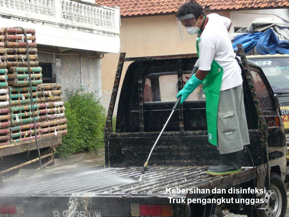 Kebersihan dan disinfeksi Truk pengangkut unggas