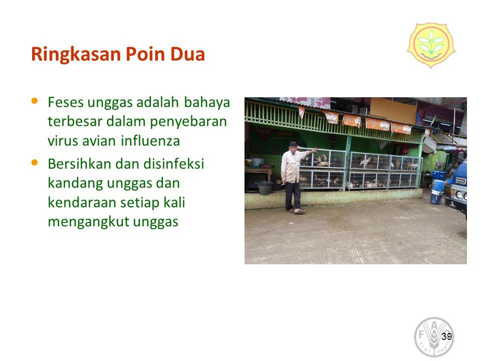 39 Ringkasan Poin Dua Feses unggas adalah bahaya terbesar dalam penyebaran virus avian influenza Bersihkan dan disinfeksi kandang unggas dan kendaraan setiap kali mengangkut unggas