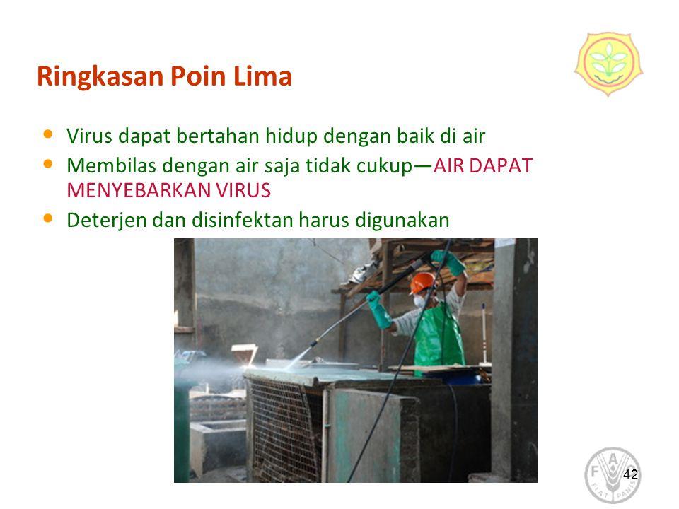 42 Ringkasan Poin Lima Virus dapat bertahan hidup dengan baik di air Membilas dengan air saja tidak cukup—AIR DAPAT MENYEBARKAN VIRUS Deterjen dan disinfektan harus digunakan