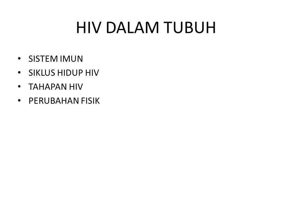 HIV DALAM TUBUH SISTEM IMUN SIKLUS HIDUP HIV TAHAPAN HIV PERUBAHAN FISIK
