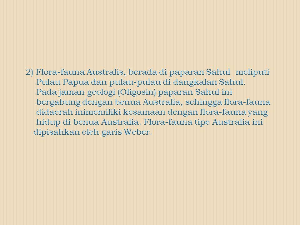 2) Flora-fauna Australis, berada di paparan Sahul meliputi Pulau Papua dan pulau-pulau di dangkalan Sahul. Pada jaman geologi (Oligosin) paparan Sahul
