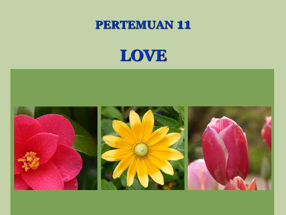 PERTEMUAN 11 LOVE