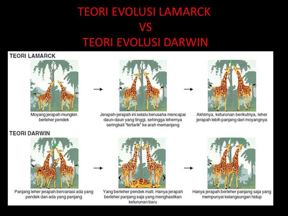 TEORI EVOLUSI LAMARCK VS TEORI EVOLUSI DARWIN