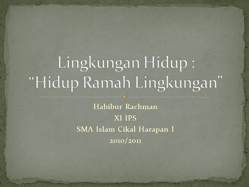 Habibur Rachman XI IPS SMA Islam Cikal Harapan I 2010/2011