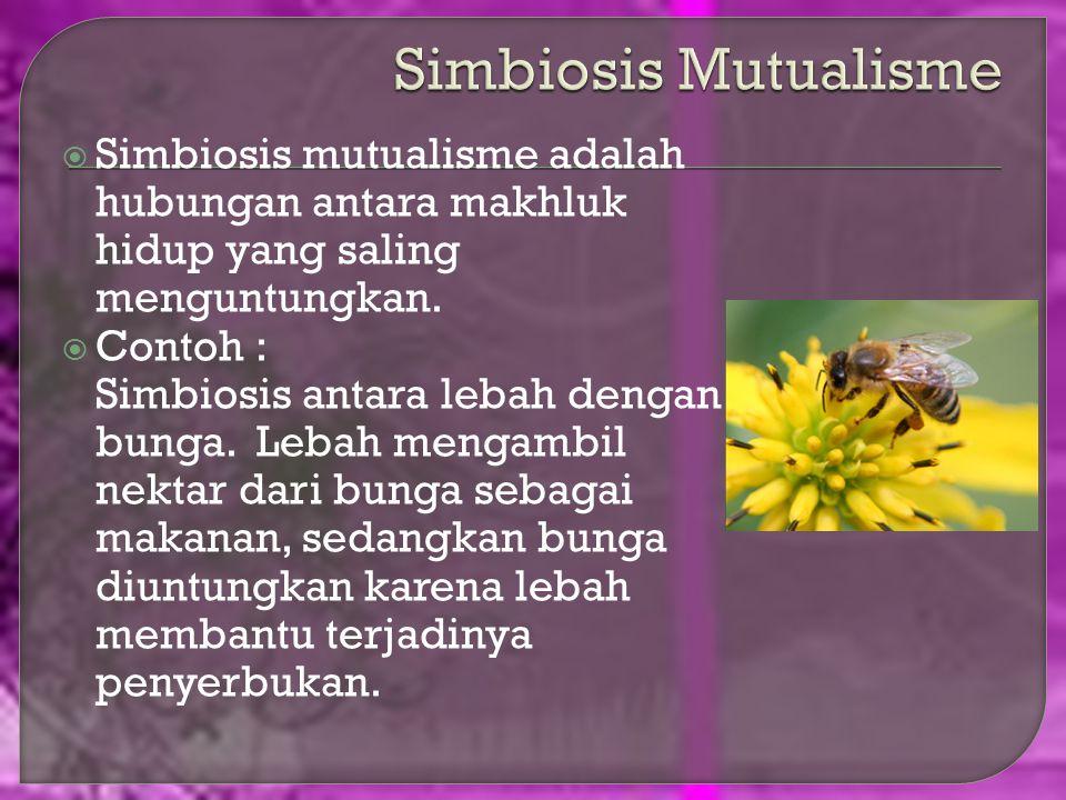Hubungan khusus antar makhluk disebut simbiosis. Simbiosis dapat dibedakan menjadi tujuh, yaitu simbiosis mutualisme, simbiosis parasitisme, simbiosis