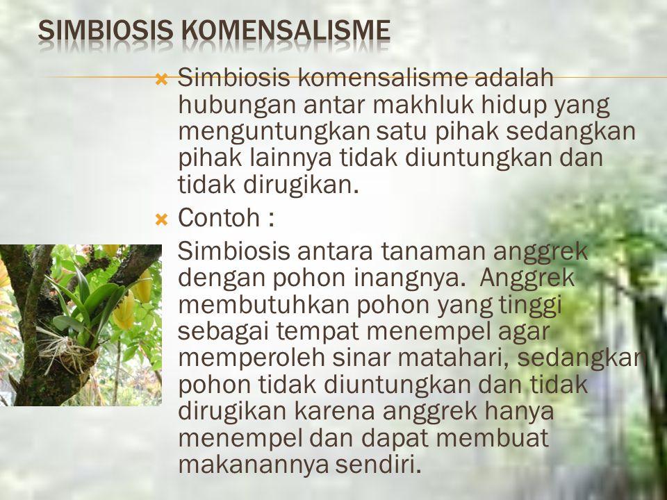 Simbiosis Parasitisme Simbiosis parasitisme adalah hubungan antar makhluk hidup yang hanya menguntungkan salah satu pihak dan merugikan pihak lain. Co