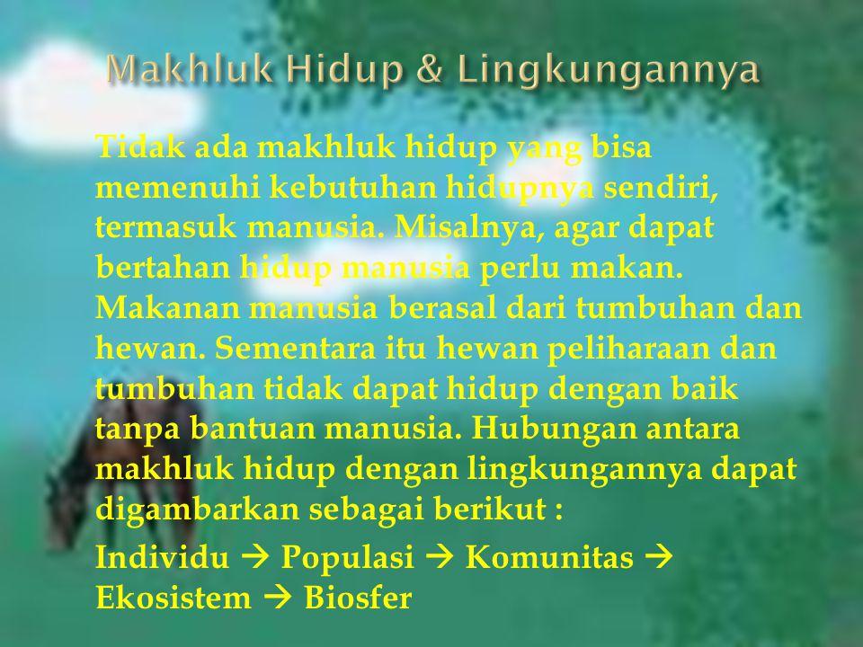 Kelompok 2 : Duwi Musdalifah (12.442.0019) Ayu Sinta Dewi (12.442.0025) Siti Romla (12.442.0037) M. Arif Kurniawan (12.442.0045) Elis Setyowati (12.44