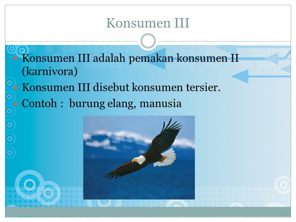 K ONSUMEN II Konsumen II adalah pemakan hewan lain (karnivora) Konsumen II disebut konsumen sekunder. Contoh : ular, musang, dll.