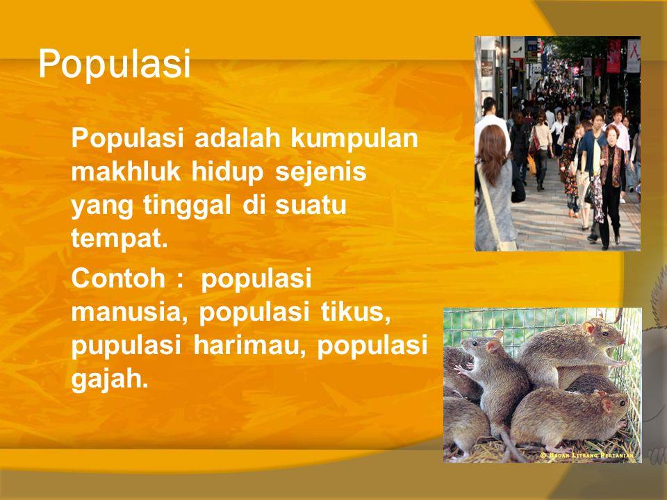 Populasi Populasi adalah kumpulan makhluk hidup sejenis yang tinggal di suatu tempat.