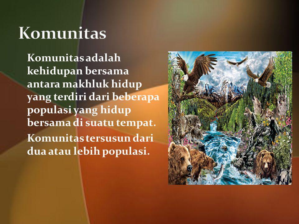 Komunitas adalah kehidupan bersama antara makhluk hidup yang terdiri dari beberapa populasi yang hidup bersama di suatu tempat.