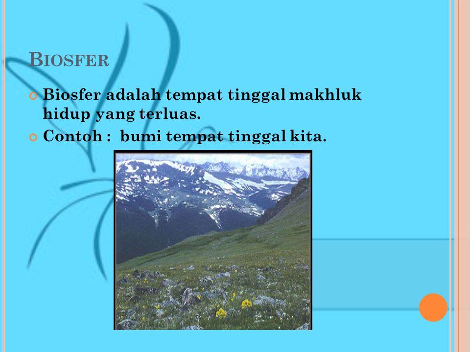 Ekosistem dibedakan menjadi : Ekosistem alam yaitu ekosistem yang terbentuk dengan sendirinya (secara alami). Contoh : danau, sungai, padang rumput, p