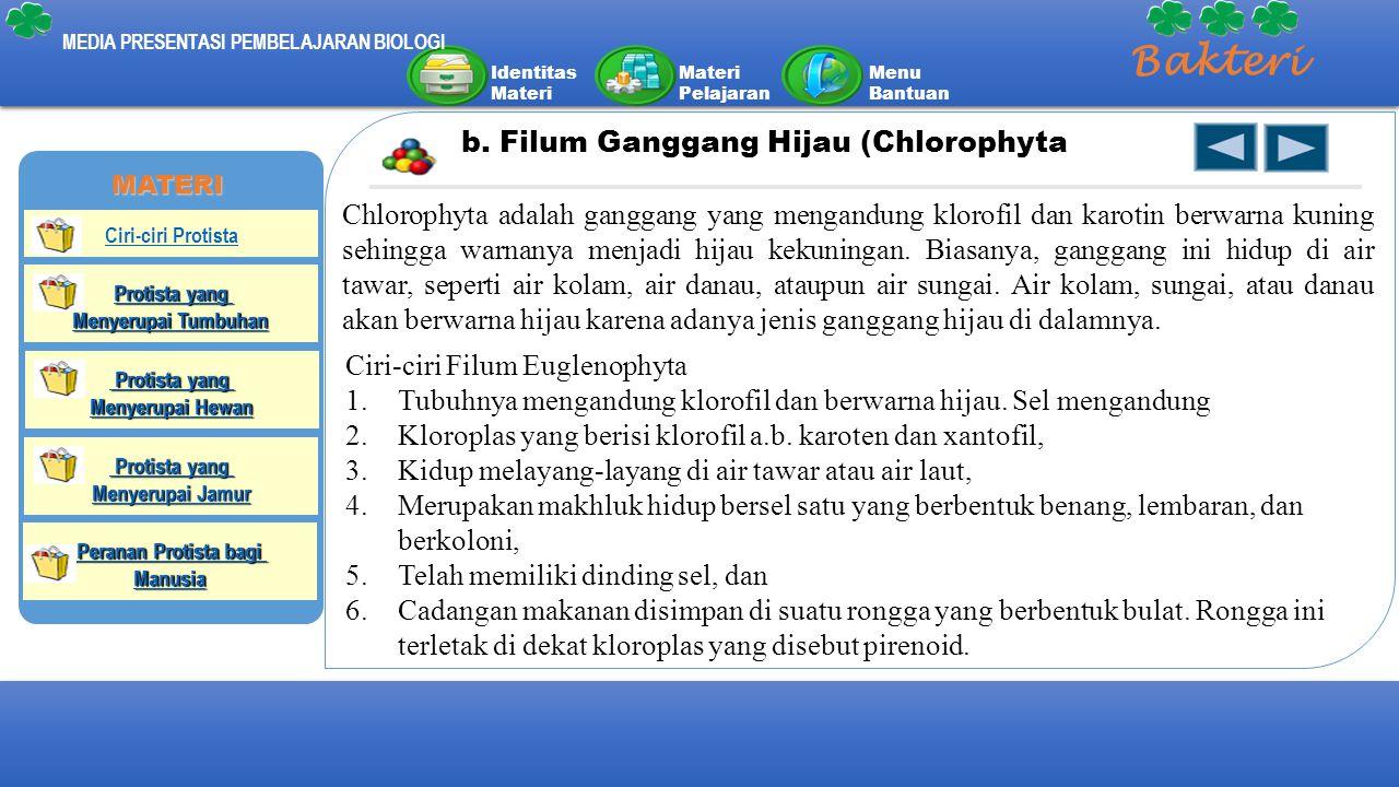 Identitas Materi Materi Pelajaran Menu Bantuan MEDIA PRESENTASI PEMBELAJARAN BIOLOGI Bakteri b. Filum Ganggang Hijau (Chlorophyta Chlorophyta adalah g