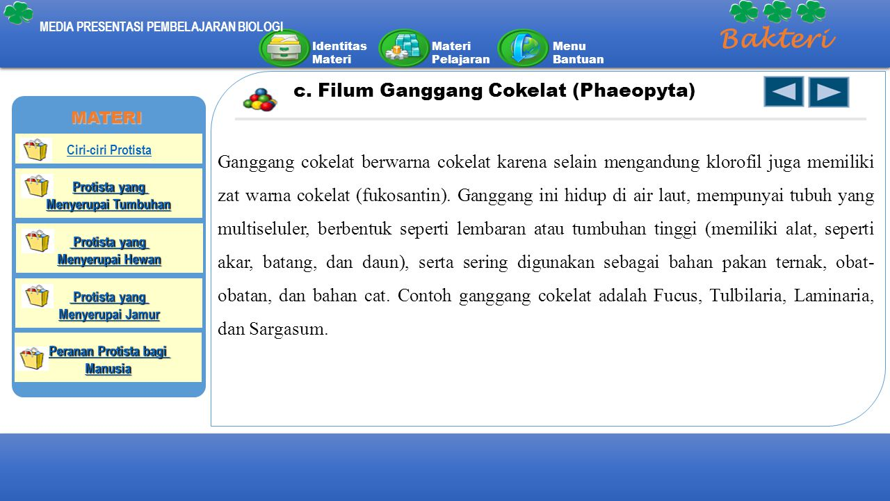Identitas Materi Materi Pelajaran Menu Bantuan MEDIA PRESENTASI PEMBELAJARAN BIOLOGI Bakteri c. Filum Ganggang Cokelat (Phaeopyta) Ganggang cokelat be