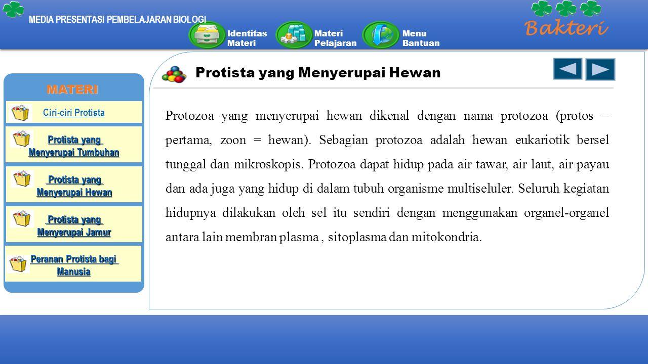 Identitas Materi Materi Pelajaran Menu Bantuan MEDIA PRESENTASI PEMBELAJARAN BIOLOGI Bakteri Protista yang Menyerupai Hewan Protozoa yang menyerupai h