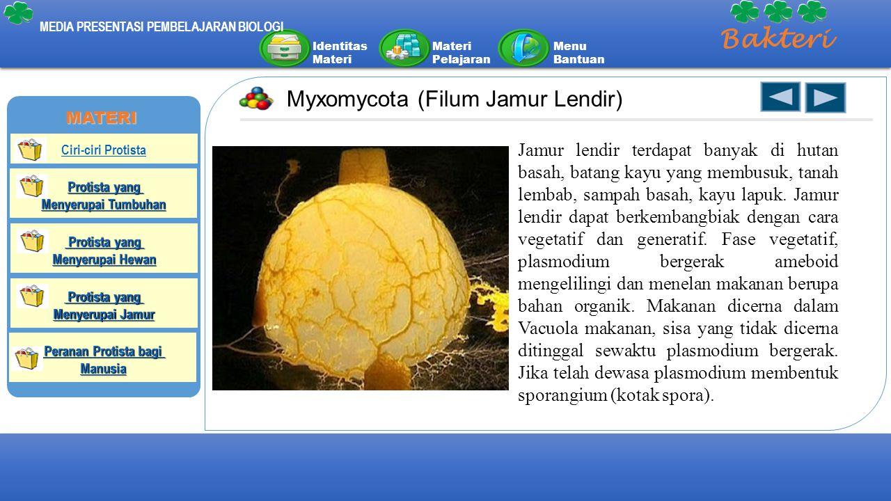 Identitas Materi Materi Pelajaran Menu Bantuan MEDIA PRESENTASI PEMBELAJARAN BIOLOGI Bakteri Myxomycota (Filum Jamur Lendir) Jamur lendir terdapat ban