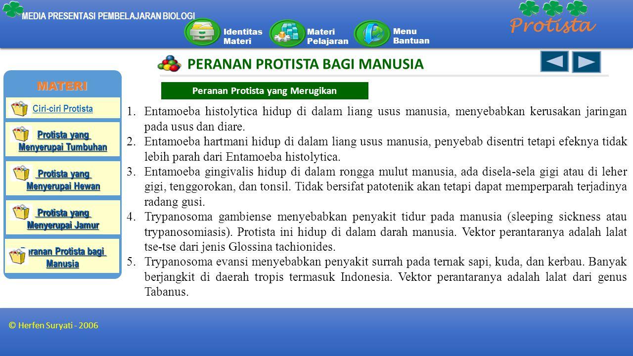 PERANAN PROTISTA BAGI MANUSIA Peranan Protista yang Merugikan 1.Entamoeba histolytica hidup di dalam liang usus manusia, menyebabkan kerusakan jaringa