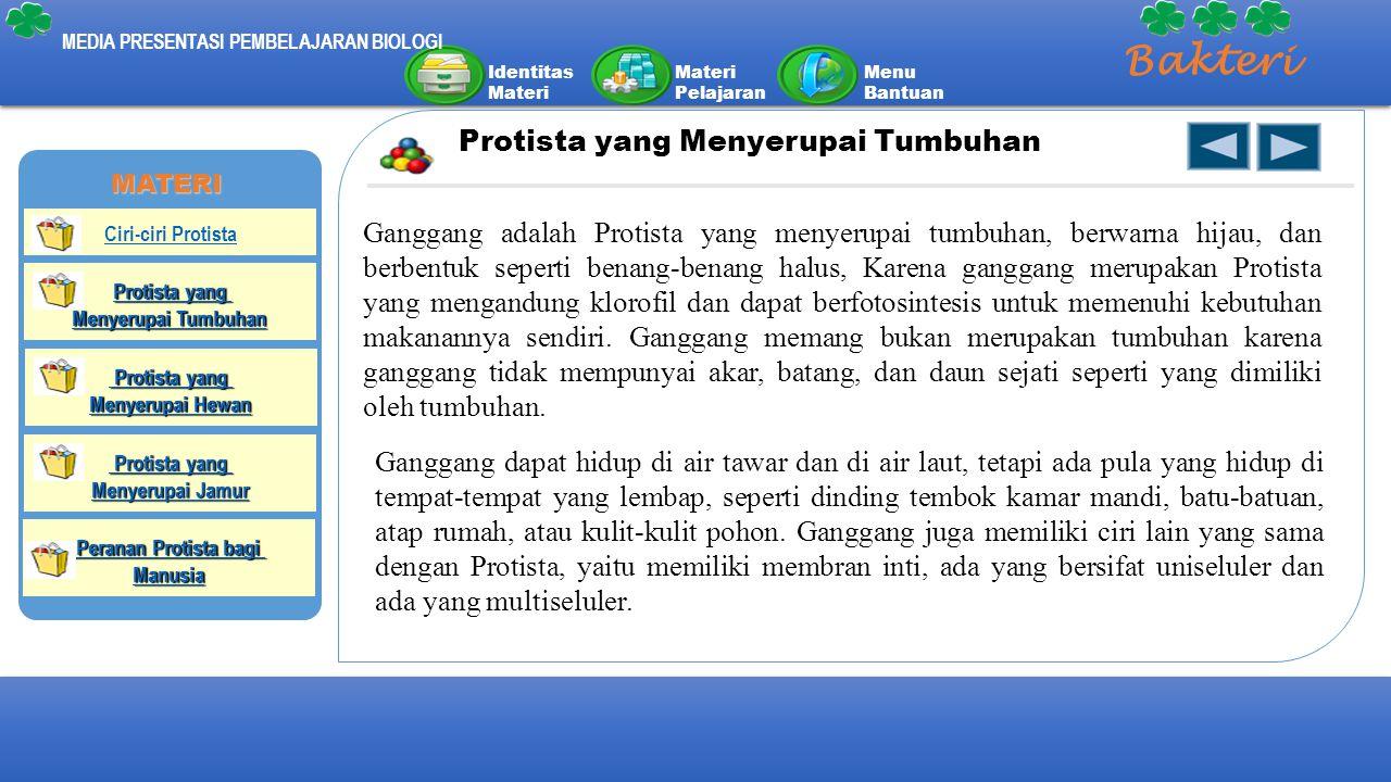 Identitas Materi Materi Pelajaran Menu Bantuan MEDIA PRESENTASI PEMBELAJARAN BIOLOGI Bakteri Protista yang Menyerupai Tumbuhan Ganggang adalah Protist