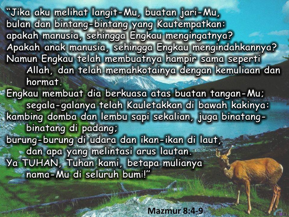 Mazmur 8:4-9