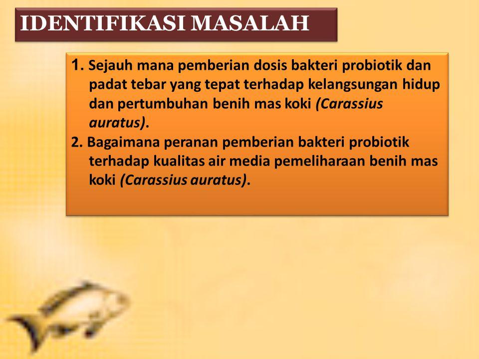 IDENTIFIKASI MASALAH 1.