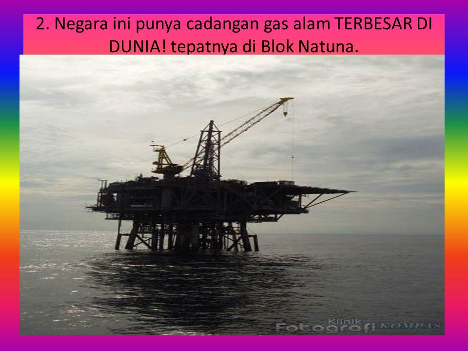 2. Negara ini punya cadangan gas alam TERBESAR DI DUNIA! tepatnya di Blok Natuna.