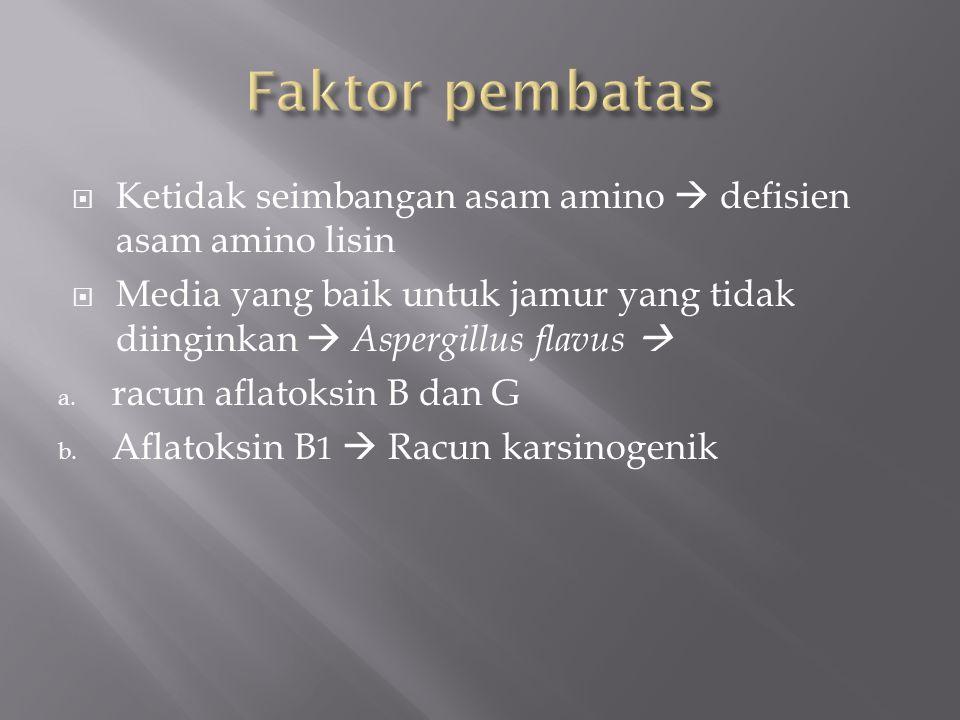  Pada babi Menyebabkan a.Kulit pucat b. Nafsu makan hilang c.