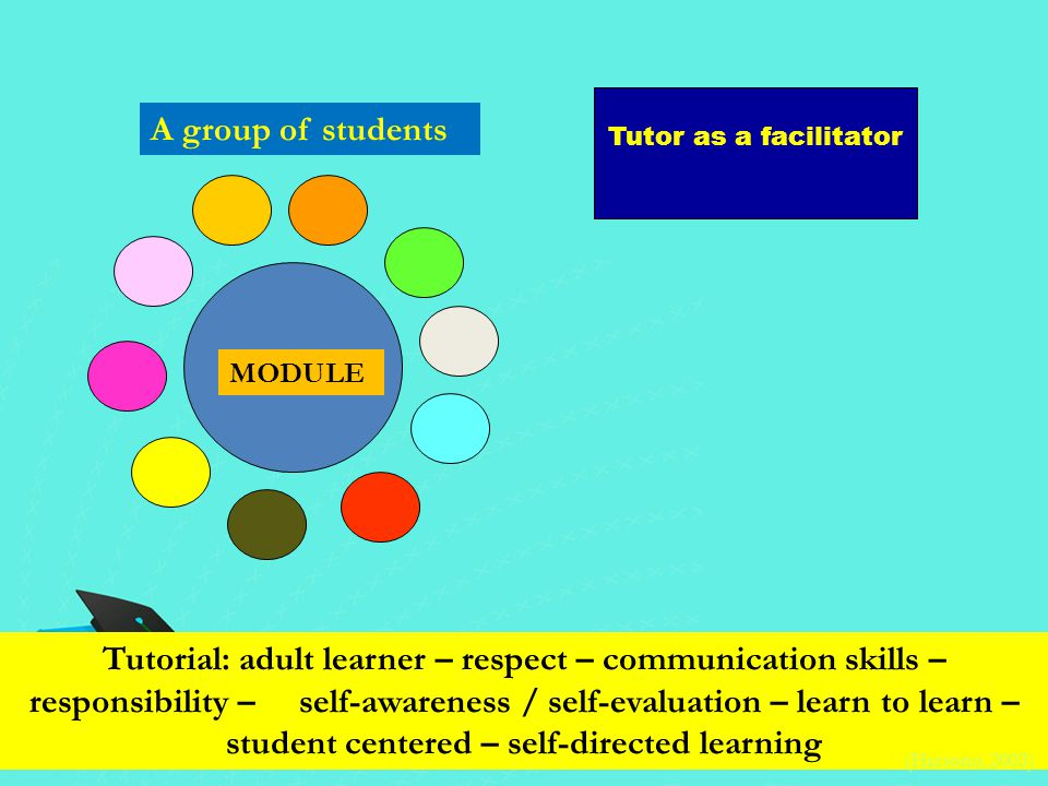 MODULE Tutor as a facilitator A group of students Tutorial: adult learner – respect – communication skills – responsibility – self-awareness / self-ev