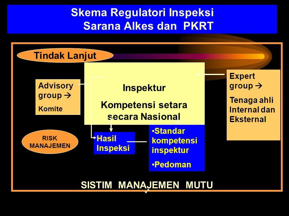 Skema Regulatori Inspeksi Sarana Alkes dan PKRT Inspektur Kompetensi setara secara Nasional Advisory group  Komite Expert group  Tenaga ahli Interna