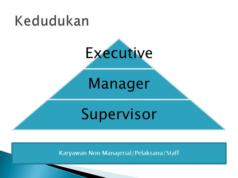 Executive Manager Supervisor Karyawan Non Manajerial/Pelaksana/Staff