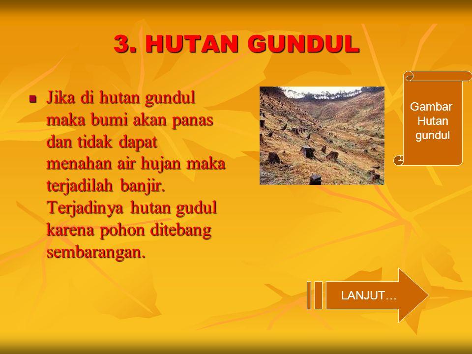 3. HUTAN GUNDUL Jika di hutan gundul maka bumi akan panas dan tidak dapat menahan air hujan maka terjadilah banjir. Terjadinya hutan gudul karena poho