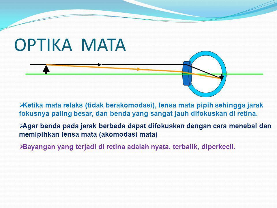 MATA Kornea dan lensa mata berfungsi sebagai lensa cembung dan menghasilkan bayangan pada bagian retina yang sensitif terhadap cahaya disebut fovea. I