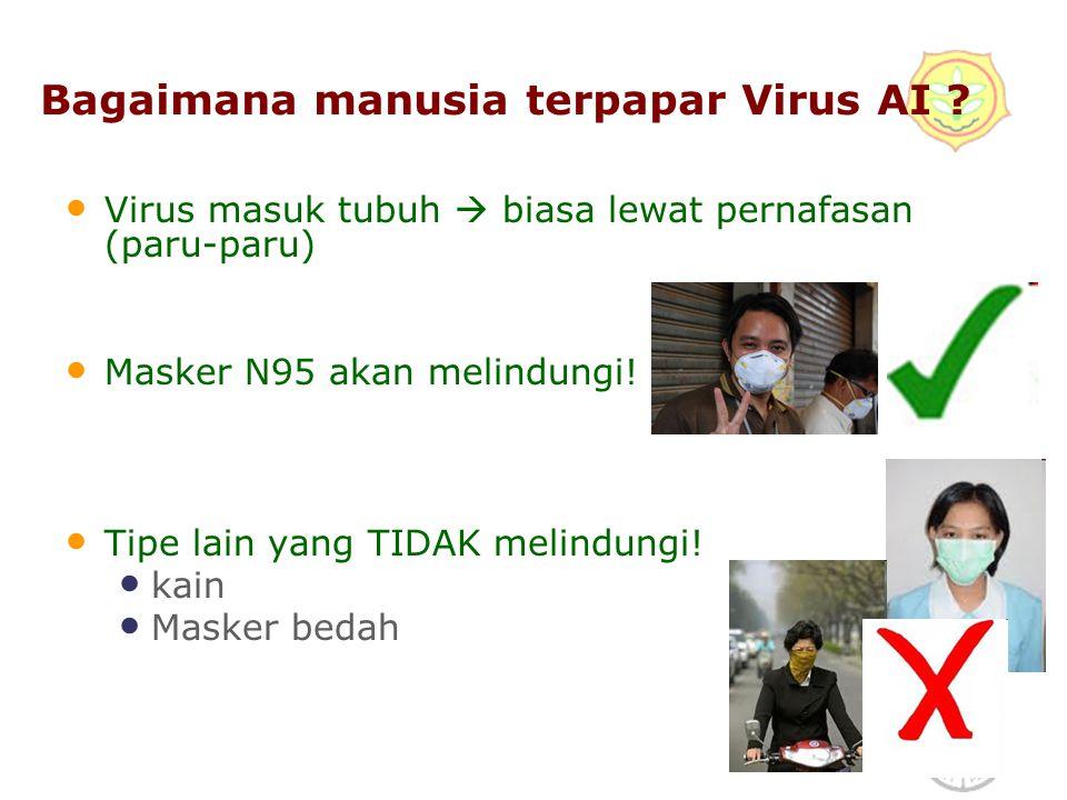 5 Mengapa Disinfektan adalah zat berbahaya.