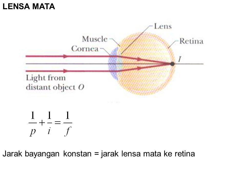 Jarak bayangan konstan = jarak lensa mata ke retina LENSA MATA