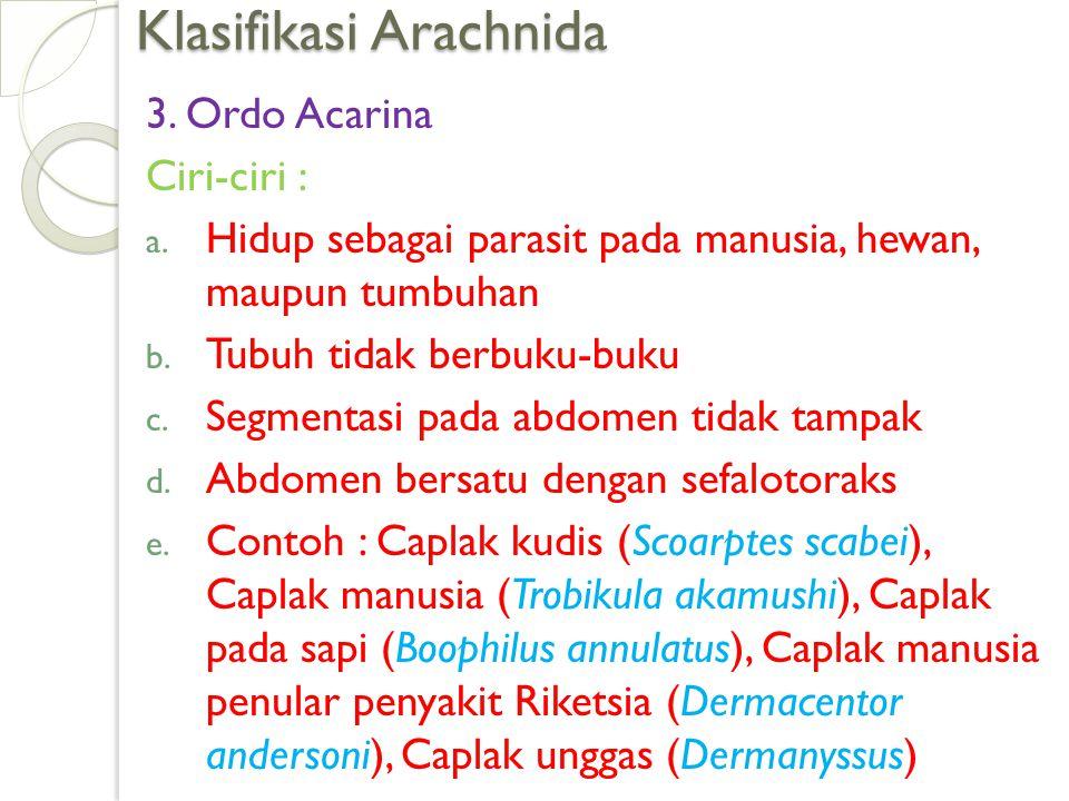 Klasifikasi Arachnida 3. Ordo Acarina Ciri-ciri : a. Hidup sebagai parasit pada manusia, hewan, maupun tumbuhan b. Tubuh tidak berbuku-buku c. Segment