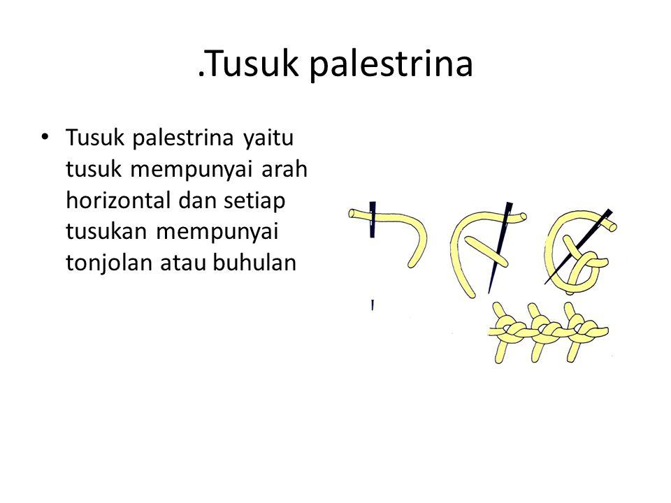 .Tusuk palestrina Tusuk palestrina yaitu tusuk mempunyai arah horizontal dan setiap tusukan mempunyai tonjolan atau buhulan