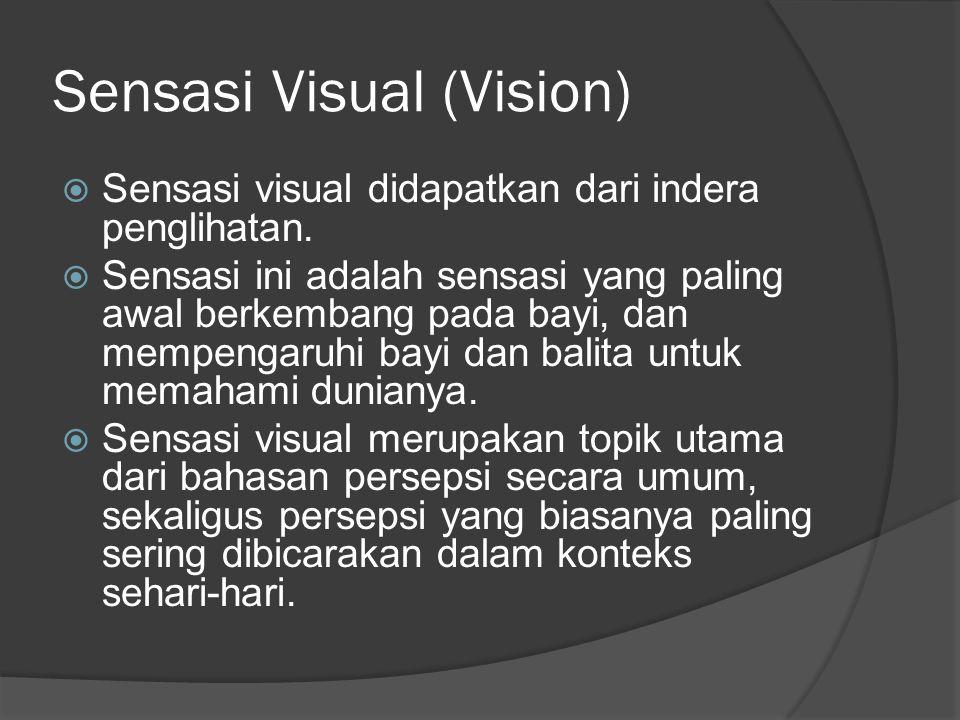 Sensasi Visual (Vision)  Sensasi visual didapatkan dari indera penglihatan.  Sensasi ini adalah sensasi yang paling awal berkembang pada bayi, dan m